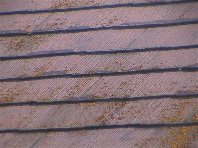 汚れた屋根板20190422