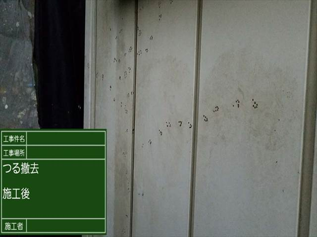 離れ_ツル撤去 (4)_M00011