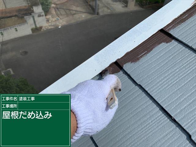 屋根だめ込み0908_a0001(1)006