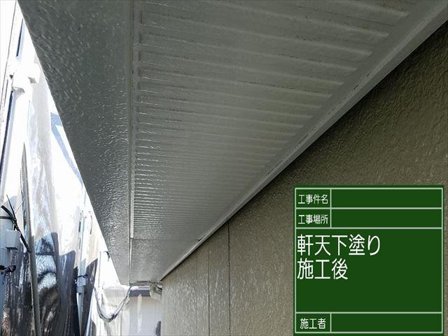 軒天下塗り_0317_M00027 (4)