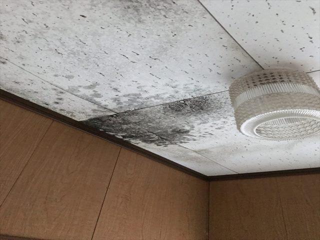 天井雨漏り_0529_M00032 (2)