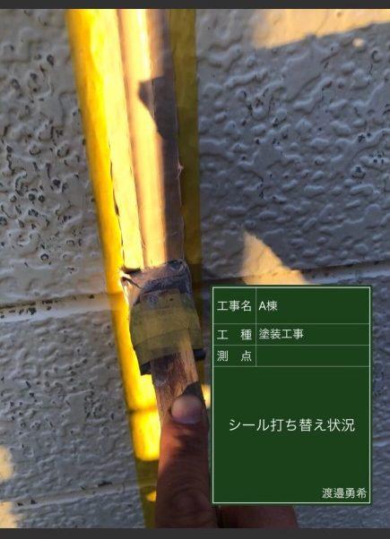 コーキング③20037