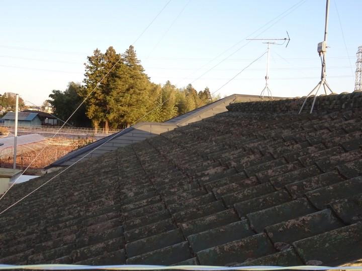 屋根現場調査20049