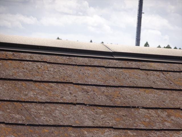屋根板金浮き