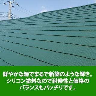 鮮やかな緑でまるで新築のような輝き。シリコン塗料なので耐候性と価格のバランスもバッチリです