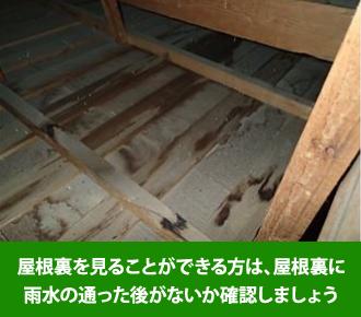 屋根裏を見ることが出来る方は、屋根裏に雨水の通った後がないか確認しましょう